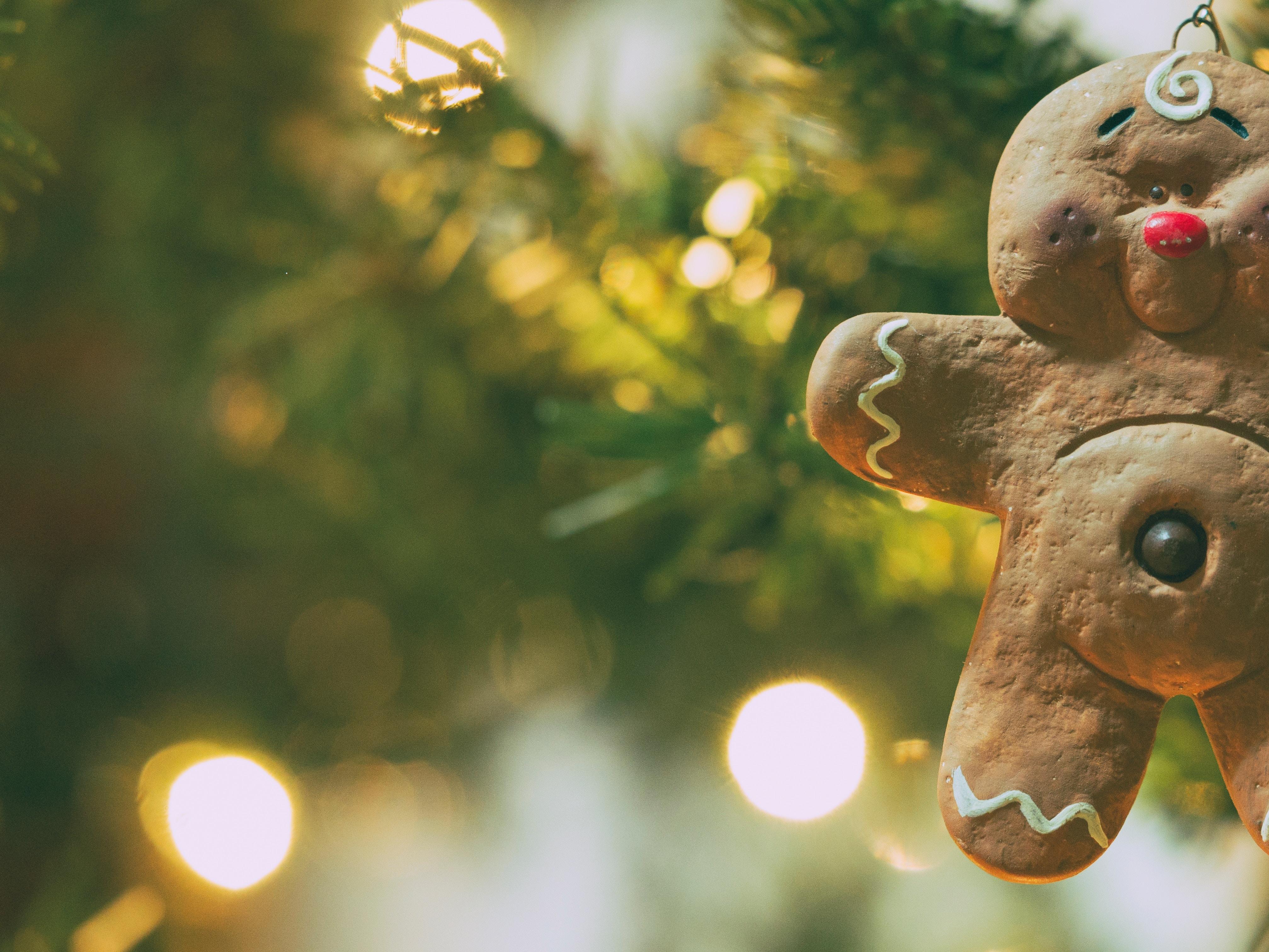 Weihnachten ökologischer feiern - 5 Tipps - so gehts!Welt der ...